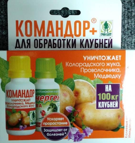 Как правильно разводить средство командор от колорадского жука? русский фермер