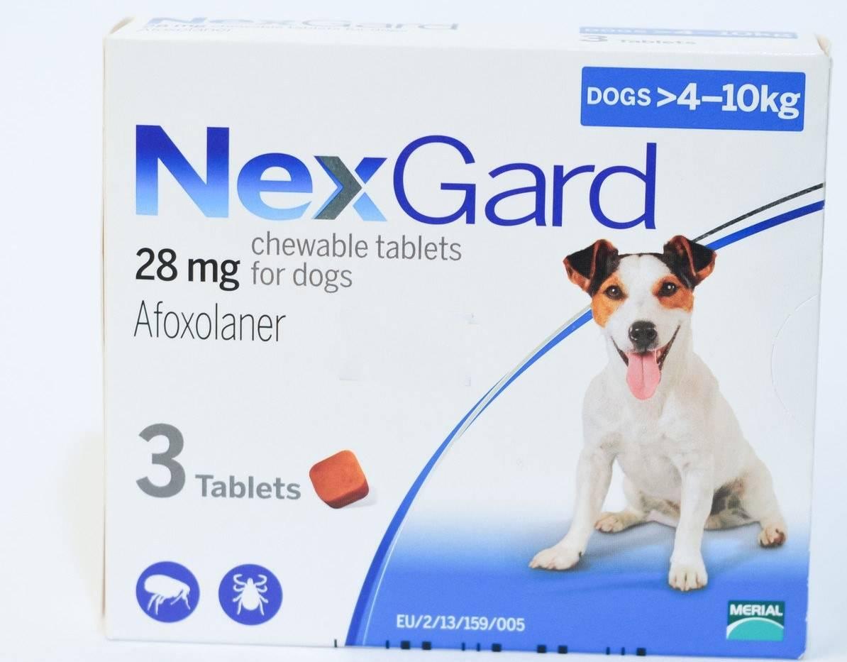Таблетки от клещей и блох для собак: отзывы ветеринаров, обзор популярных средств, безопасность и эффективность