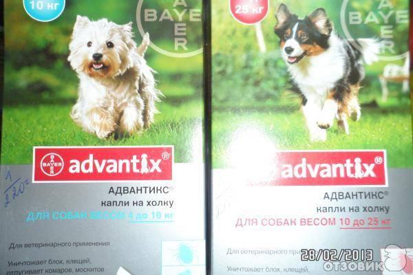 Адвантикс / advantix (капли) для собак   отзывы о применении препаратов для животных от ветеринаров и заводчиков