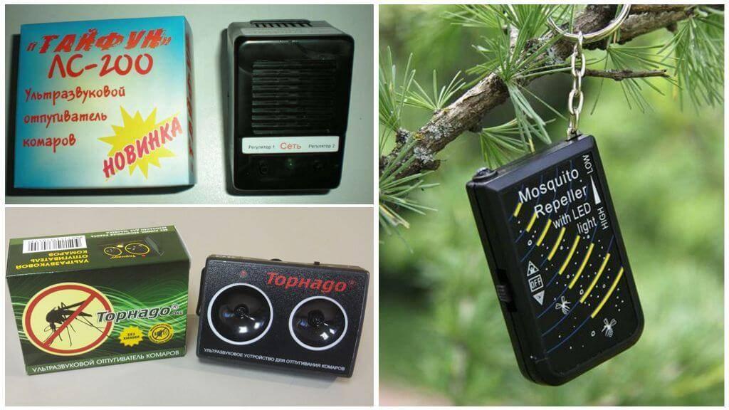 Как защититься от комаров на даче: растения, препараты и ультразвуковые светильники