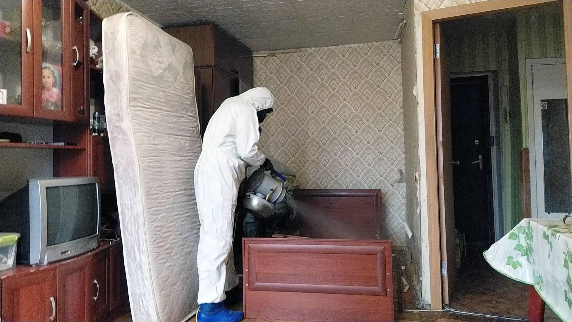 Обработка квартиры от блох в москве по доступным ценам | центр дезинфекции герадез