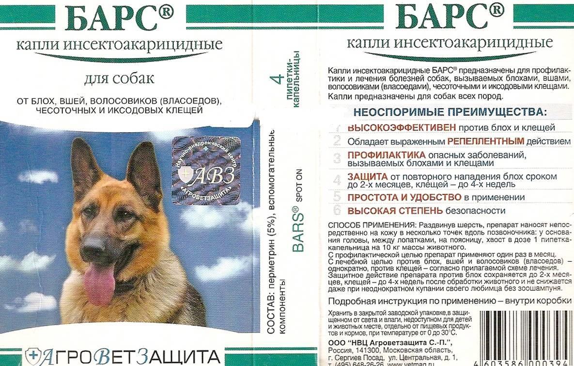 Инструкция по применению капель от клещей «практик» для собак: рассматриваем подробно