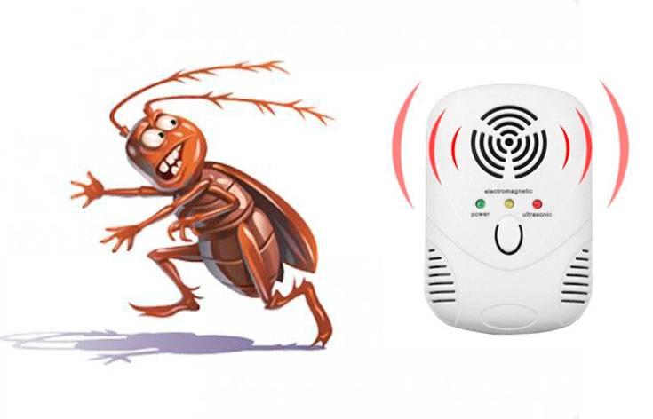 Избавляемся от тараканов с помощью ультразвуковых приборов