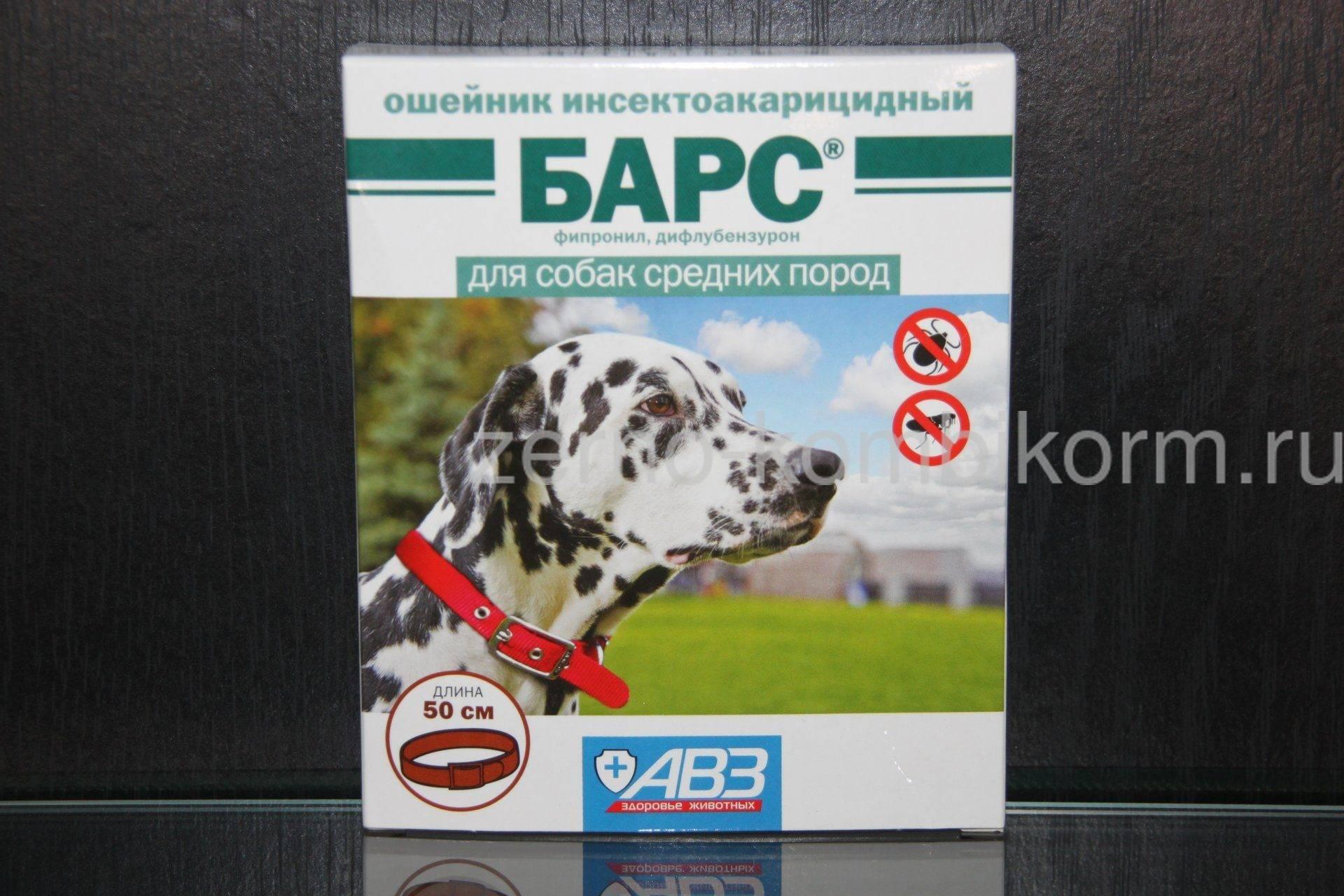 Ошейник от клещей для собак барс - отзывы и инструкции к применению