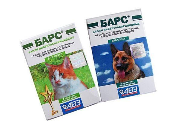 Барс - капли от блох для кошек: инструкция по применению, отзывы