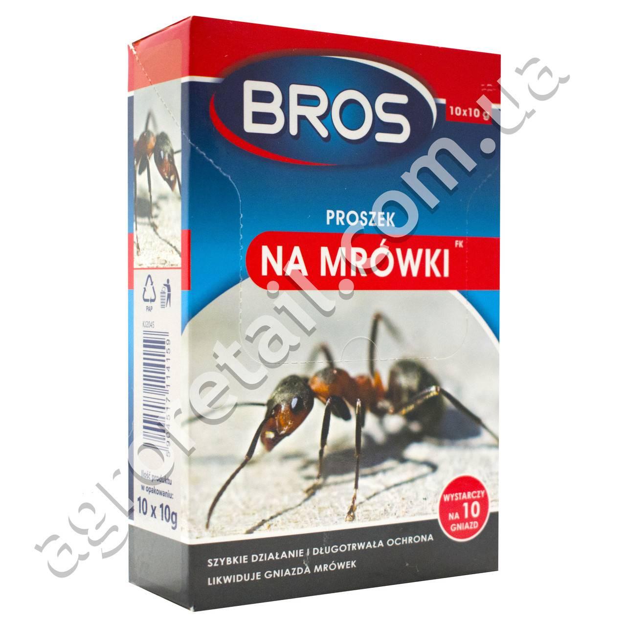 Эффективные порошки от муравьев, безопасные для людей: правда или миф?