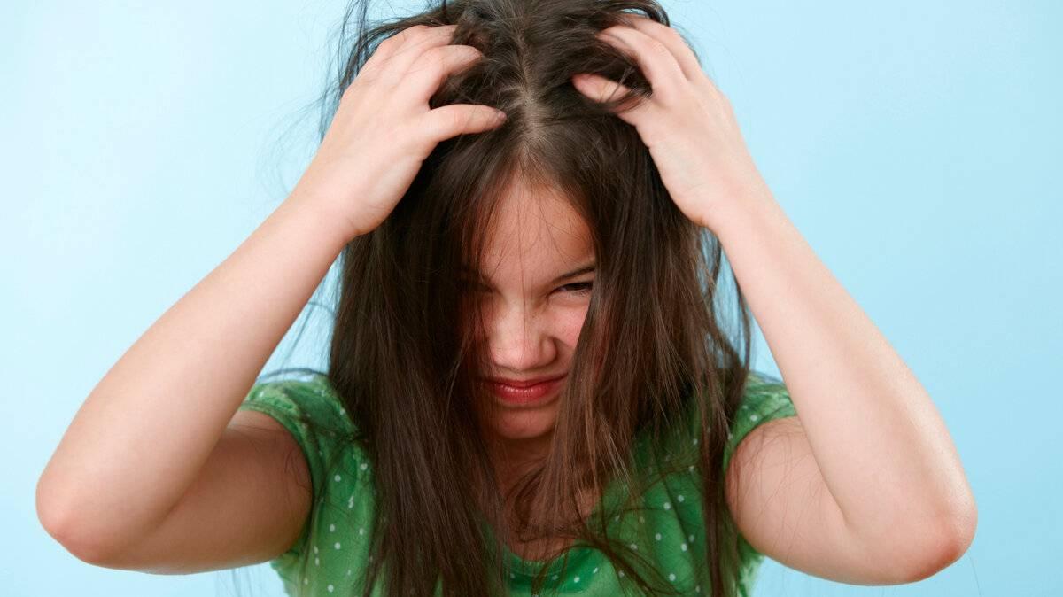 Если чешется голова, но вшей нет — возможные причины