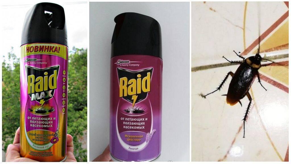 Рейд от тараканов - действие, эффективность, преимущества и недостатки