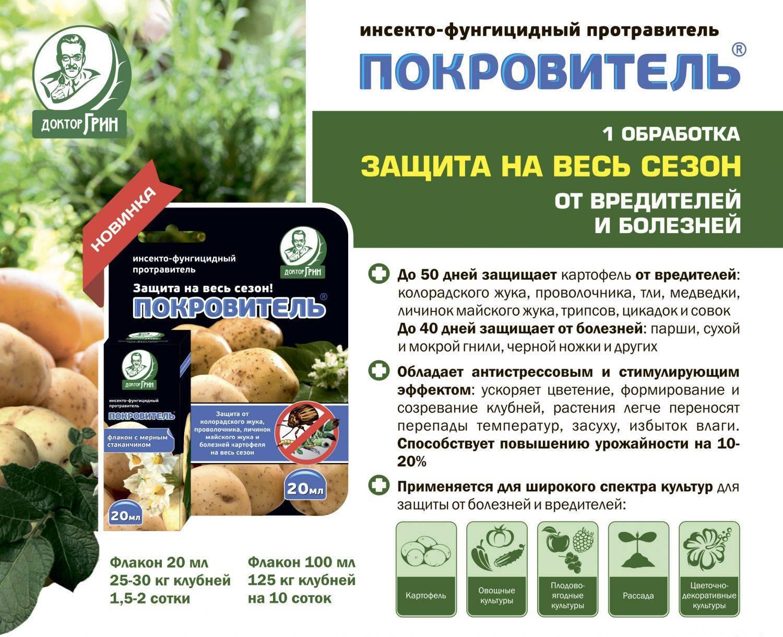 Проволочник — беспощадный вредитель картофеля. как избавиться от проволочника? — ботаничка.ru