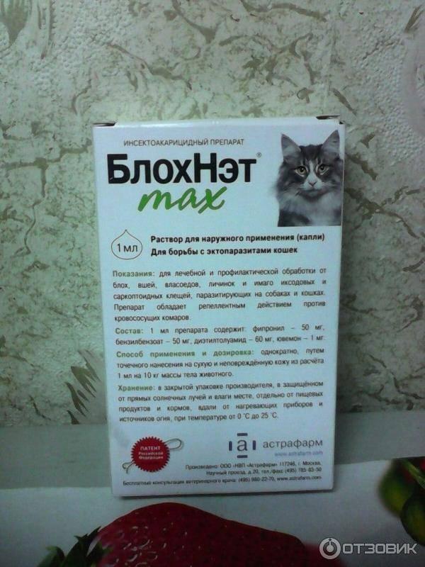 Капли блохнэт для собак: инструкция по применению, отзывы