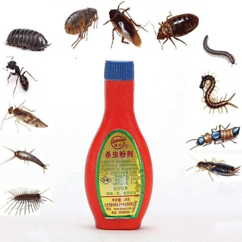 Как использовать дуст от тараканов: советы и рекомендации