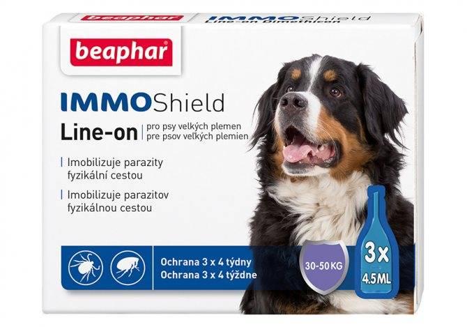 Какое средство лучше защитит собаку от клещей?