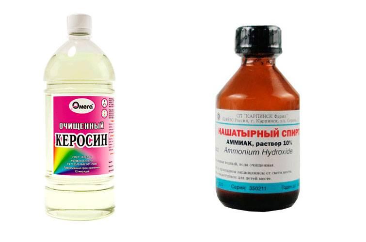 Нашатырный спирт поможет быстро и эффективно избавиться от тараканов