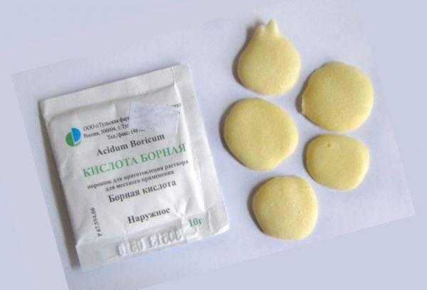 Борная кислота от тараканов: рецепты приготовления отравы - шариков с яйцом, картофелем, отзывы