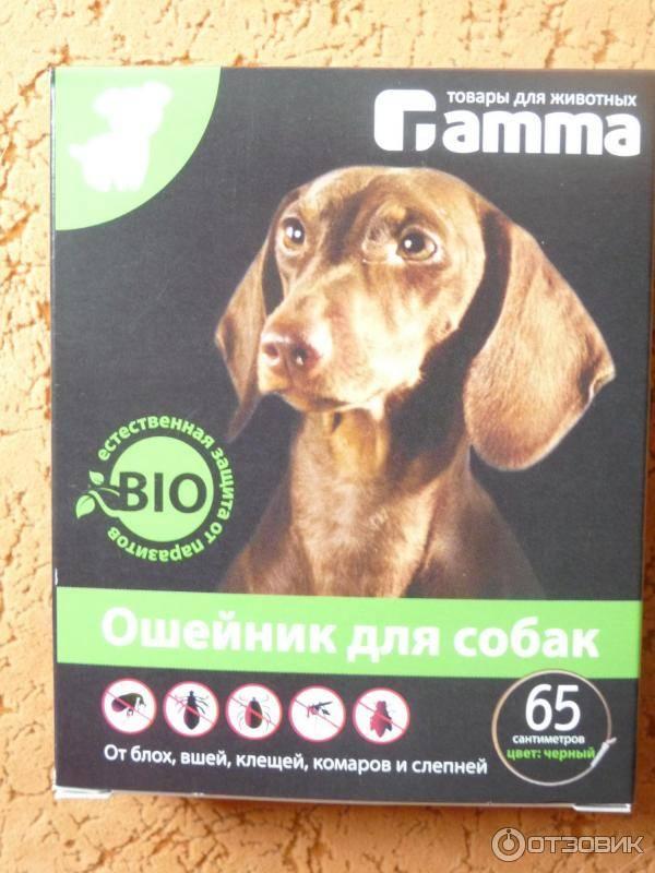 Ошейник от блох и клещей для собак и щенят: какой лучше, виды, обзор популярных брендов, отзывы и рекомендации