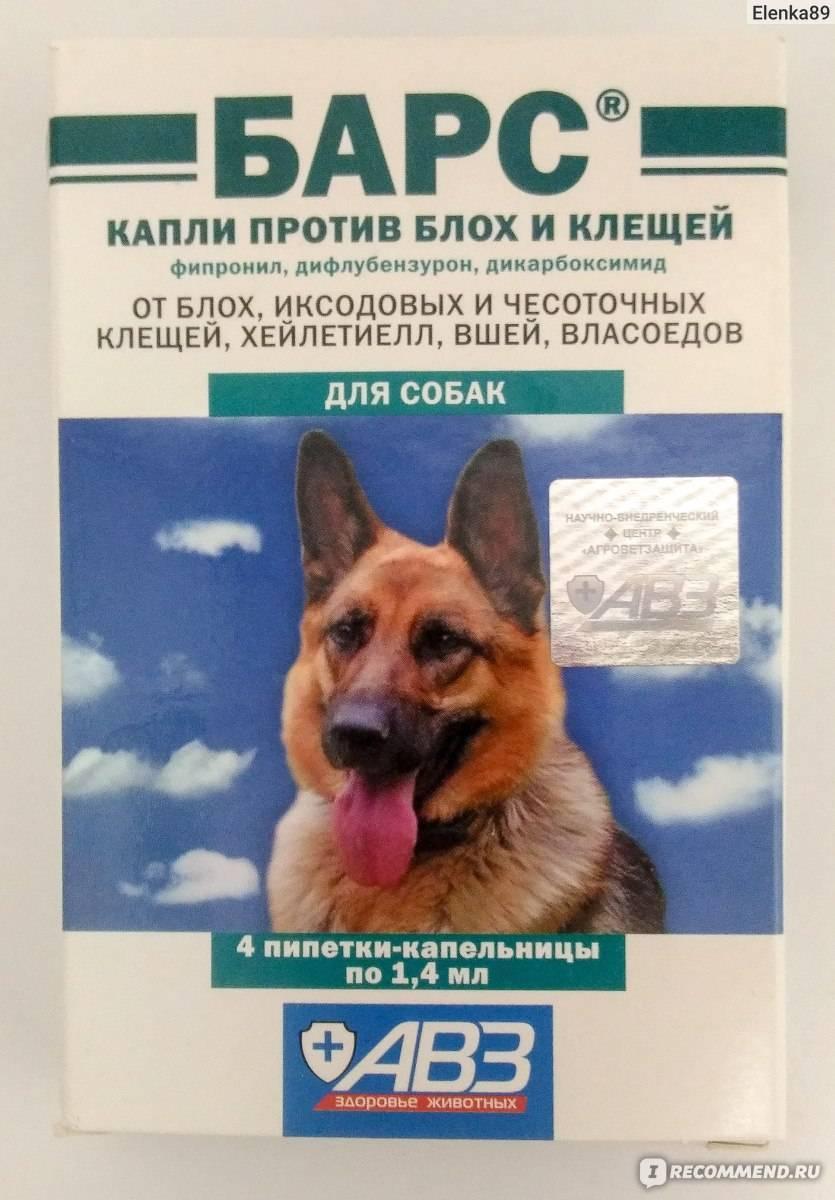 Лучшая защита от клещей для собак – капли