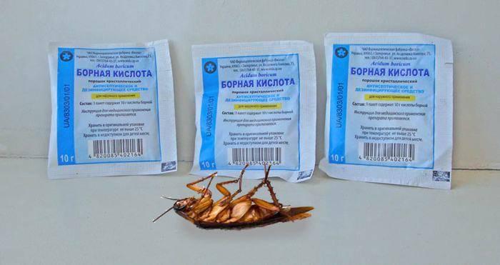Борная кислота от тараканов: лучшие рецепты приготовления, пропорции, отзывы