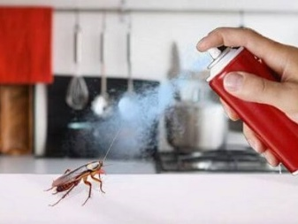 Как избавиться от тараканов в частном доме защита на всегда
