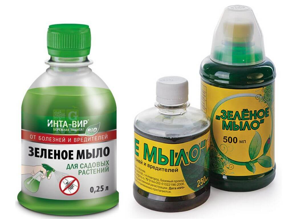 Зеленое мыло: экологически чистый и безопасный инсектицид