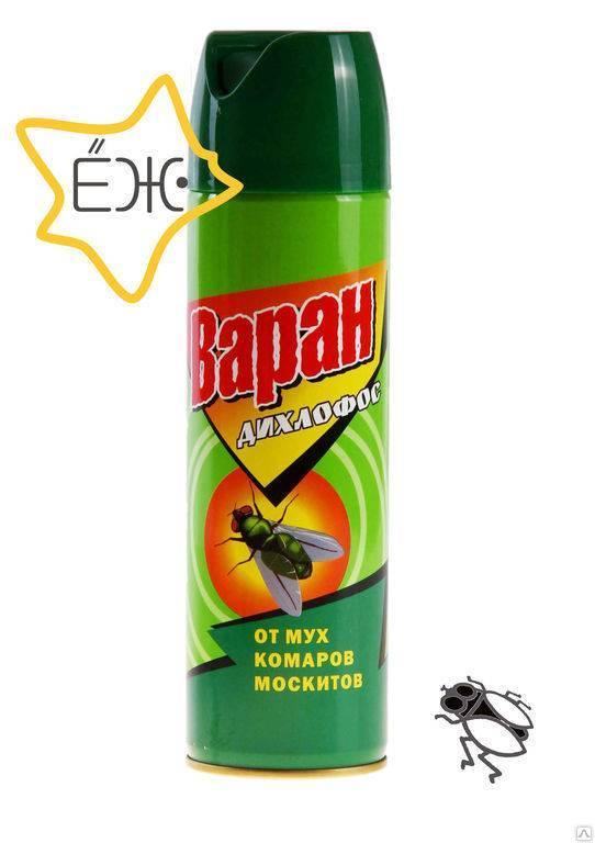 Дихлофос от тараканов - помогает ли и как правильно травить (отзывы)