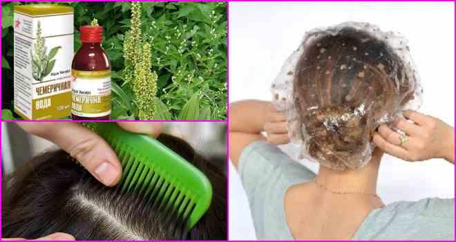Чемеричная вода от вшей и гнид: полезные свойства, инструкция, отзывы | все о паразитах