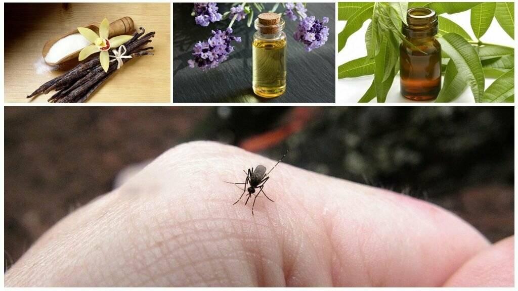 Как избавиться от комаров — выбор лучшего средства