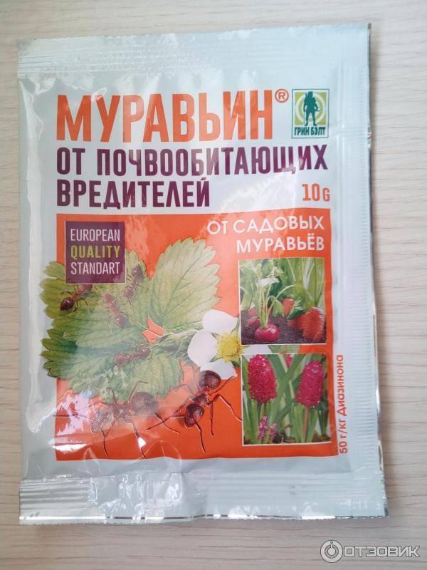 Муравьин 10 г от муравьев: инструкция по применению и отзывы - сорнякам нет