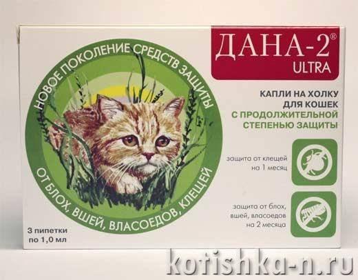Капли от блох дана ультра нео для кошек и собак. основные особенности капель «дана спот-он» для кошек