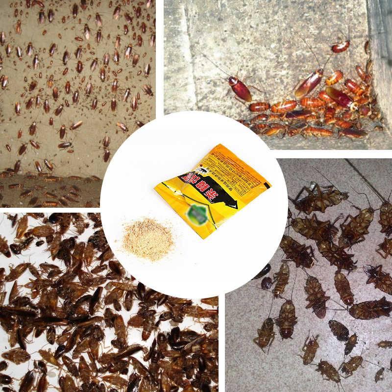 Как избавиться от черных тараканов в доме и квартире?