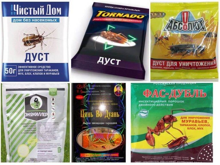 Дуст от тараканов: как он действует, виды и инструкция