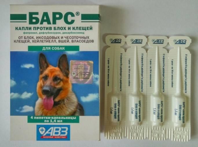 Барс капли для собак: инструкция по применению, аналоги