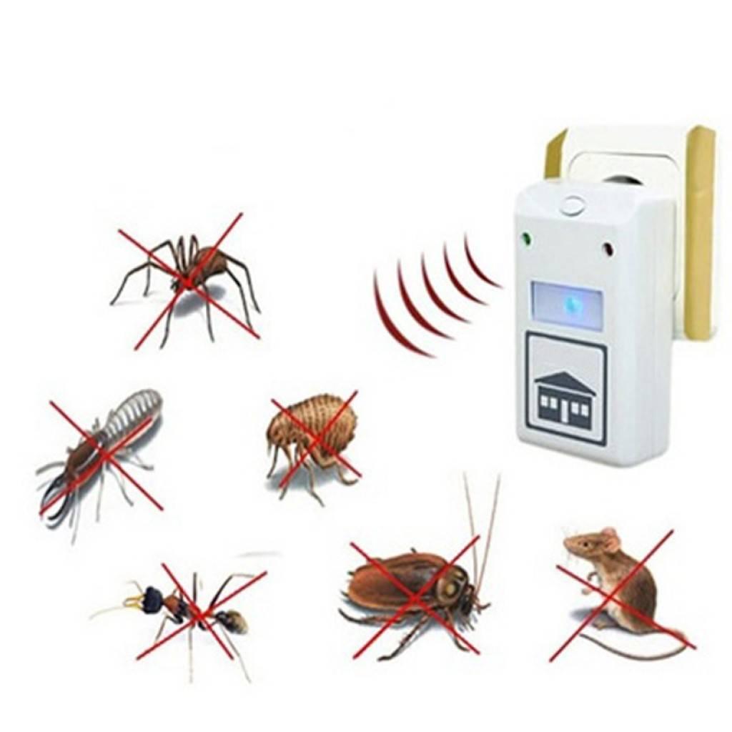 Отзывы об отпугивателе грызунов и насекомых pest reject