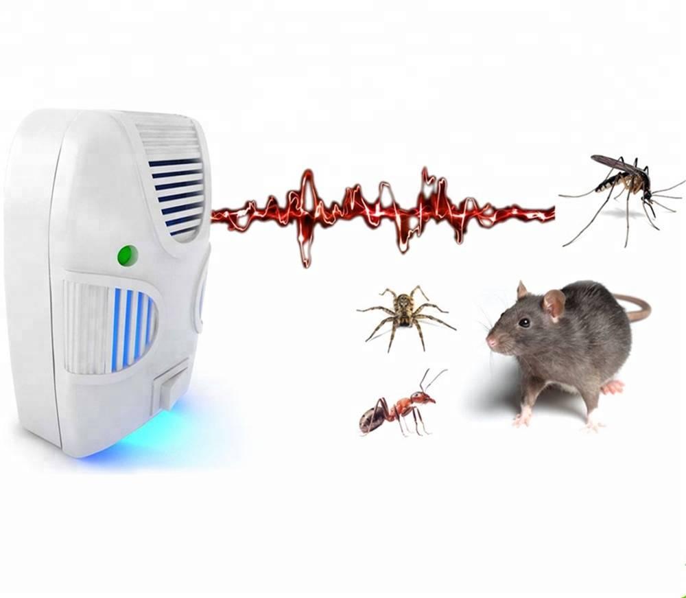Как навсегда избавиться от мышей в квартире?