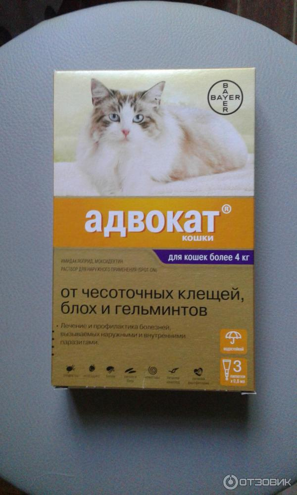 Капли адвокат для кошек и котов, инструкция по применению