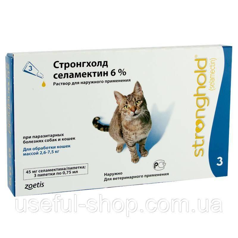 Блохи у кошек: опасность, диагностика и лечение