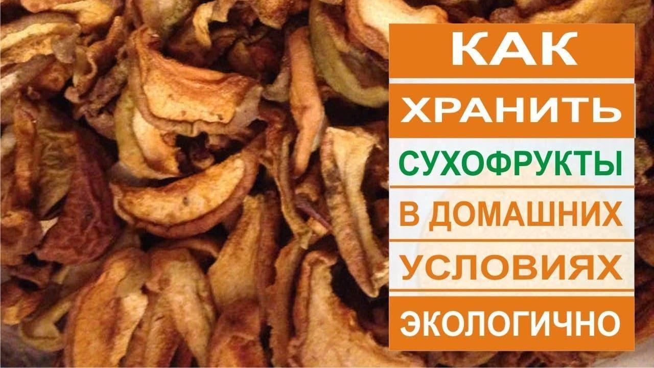 Как хранить сушеные яблоки в банках? / асиенда.ру