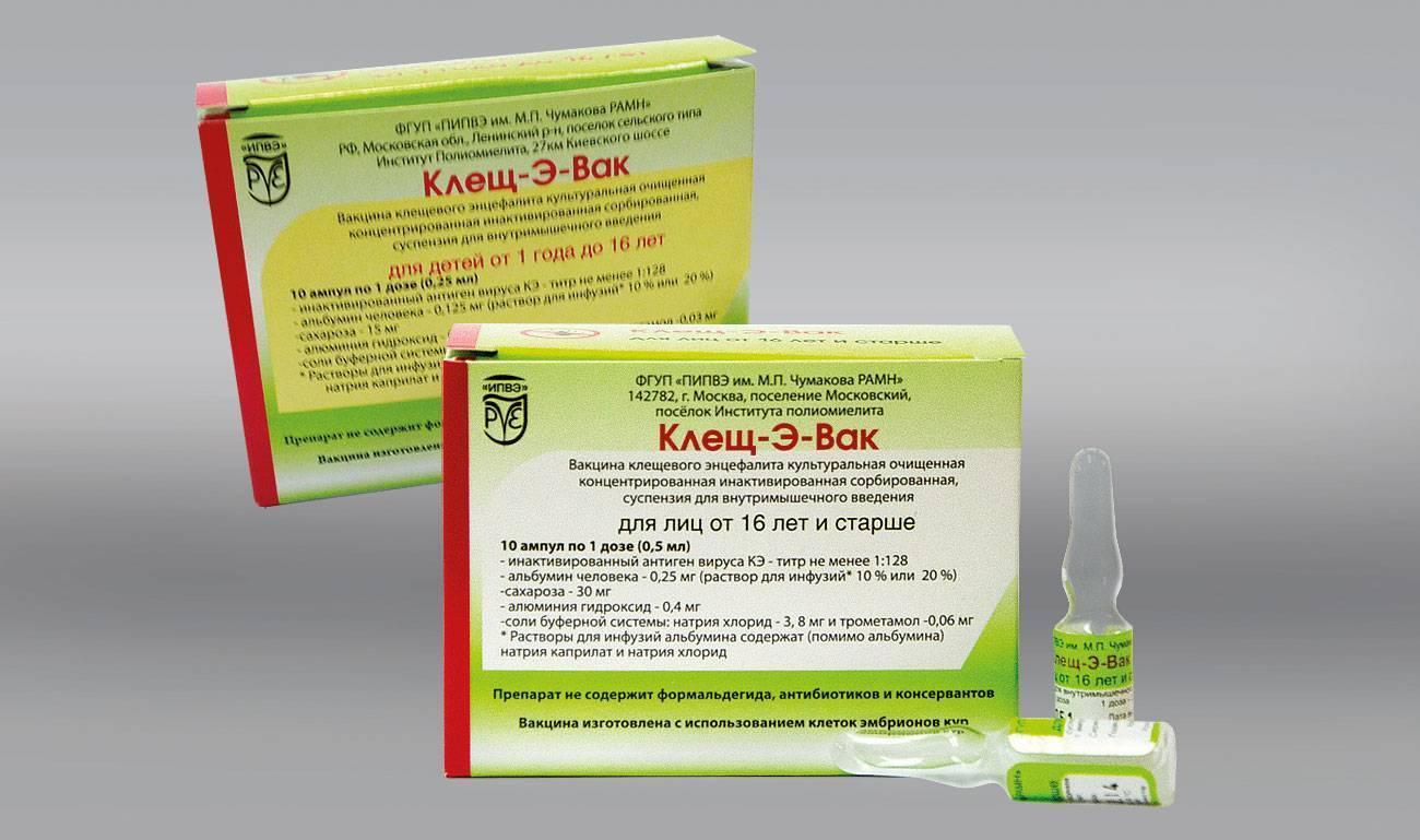 Стоит ли ставить прививку от клещевого энцефалита, и какие особенности имеет такая вакцинация