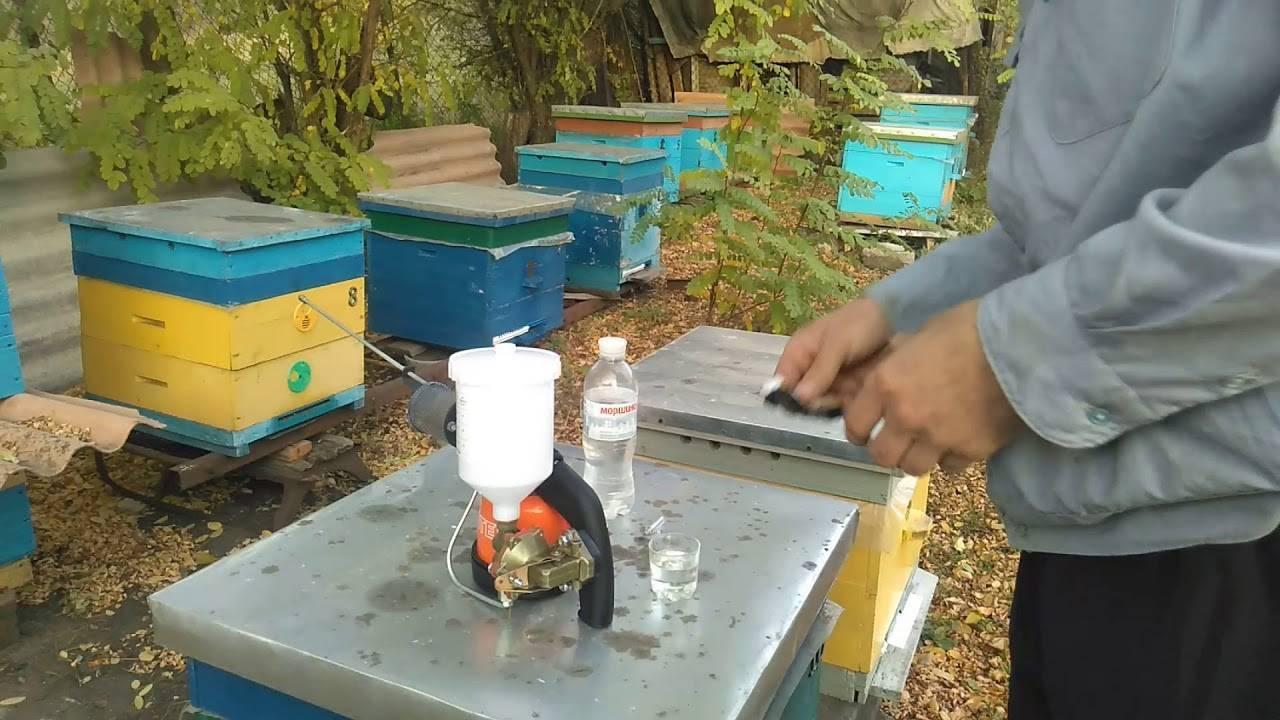 Обработка пчел бипином: как и когда обрабатывать
