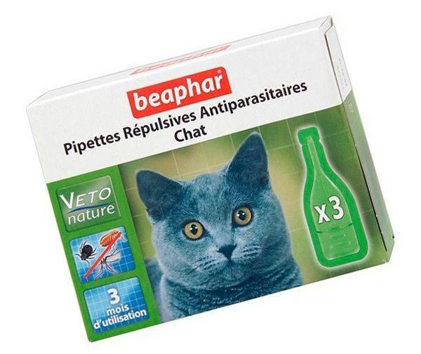 Что делать при отравлении каплями от блох: кошки, собаки отравление.ру что делать при отравлении каплями от блох: кошки, собаки