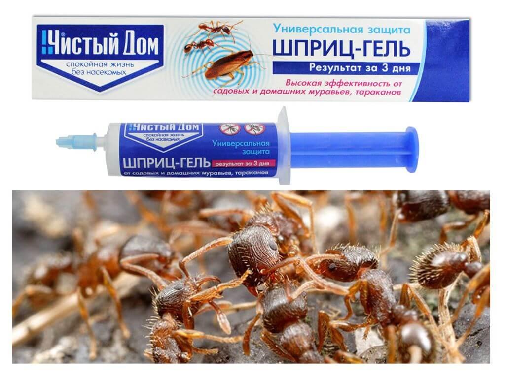 Гель чистый дом 35 мл средства от насекомых 80 руб. | мосдезспецторг