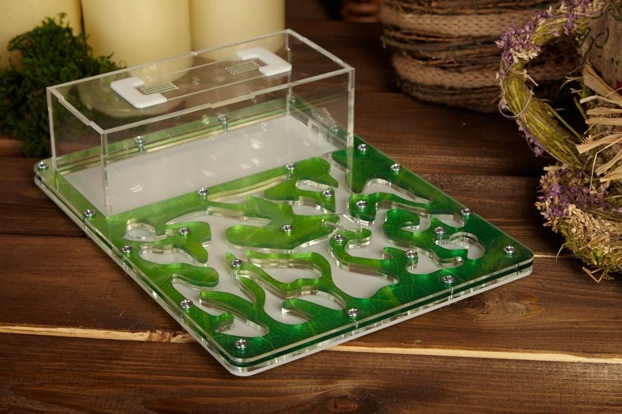 Как сделать муравьиную ферму своими руками: материалы, плюсы и минусы такого формикария для муравьев