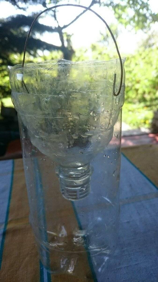 Как сделать ловушку для ос из пластиковой бутылки