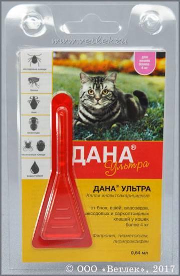 Api-san дана ультра капли инсектоакарицидные на холку для котят и кошек до 4 кг (арт. 61682)