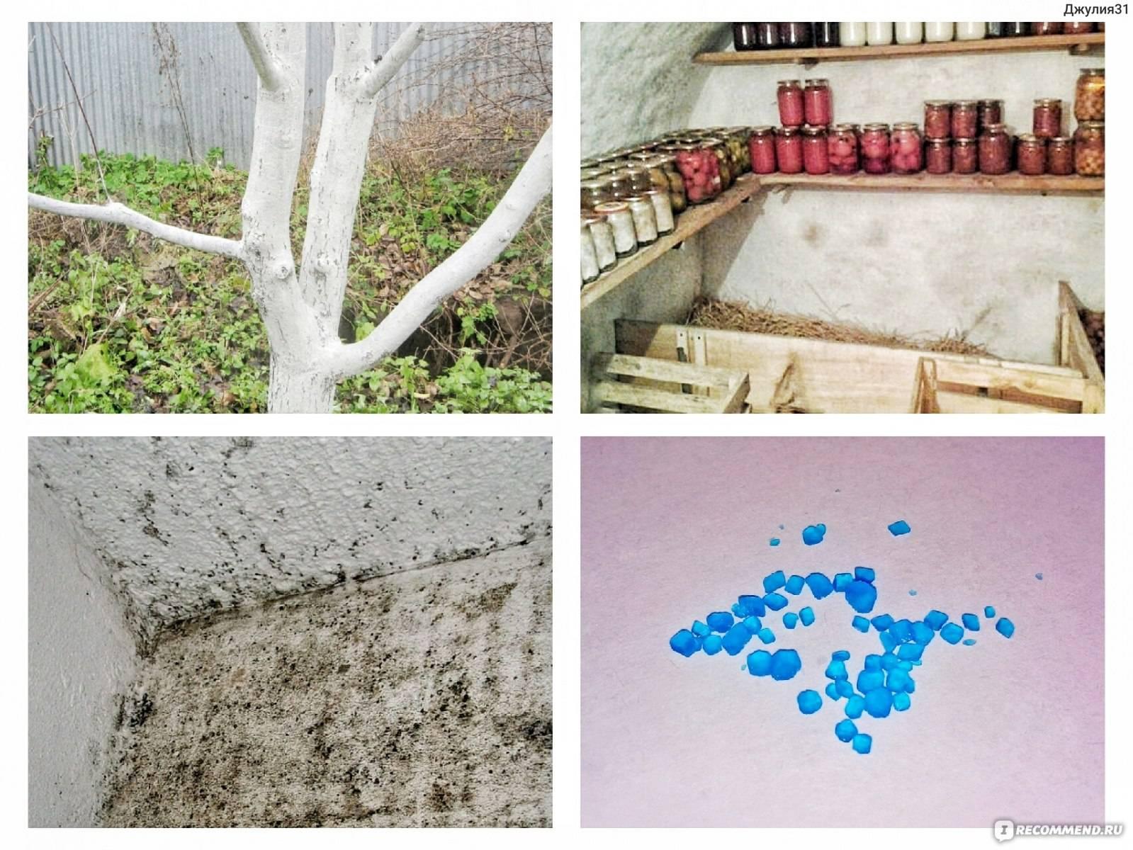 Обработка стен медным купоросом от грибка и плесени