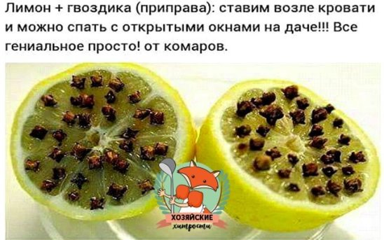 Как можно использовать лимон и гвоздику от комаров