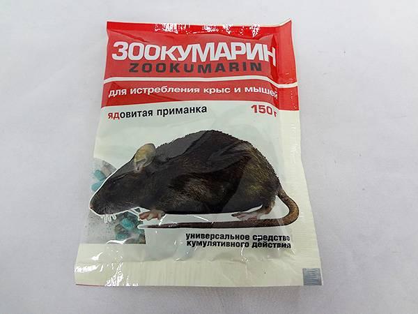 Крысиный яд: как действует, опасность, симптомы отравления