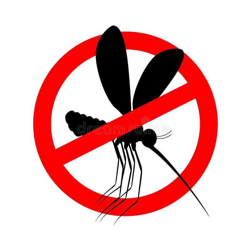 Сонник много комаров в лесу. к чему снится много комаров в лесу видеть во сне - сонник дома солнца