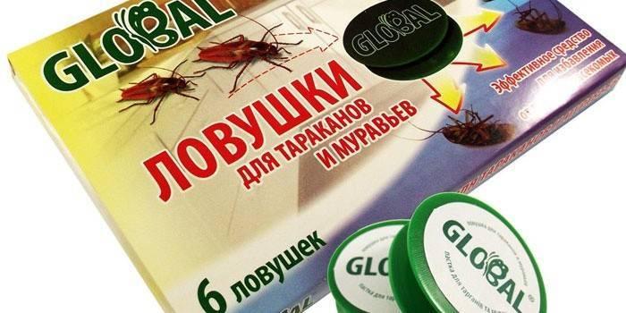 Лучшие народные средства для борьбы с тараканами