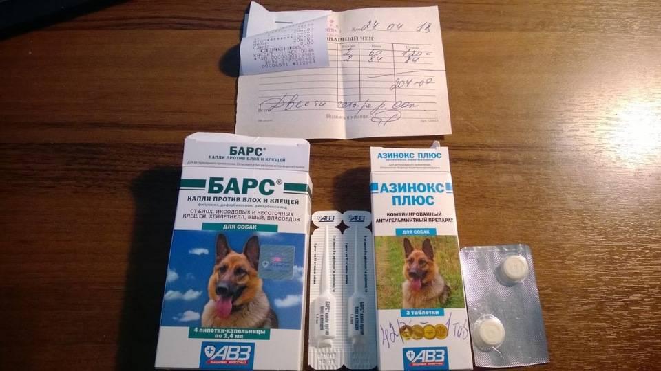 Прививка от клещей для собак - название, когда делать, цена, отзывы ветеринаров