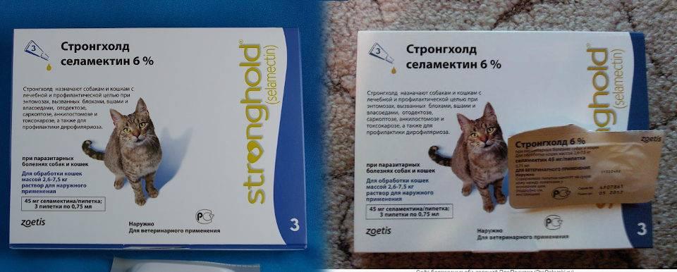 Капли стронгхолд для кошек и собак - инструкция и отзывы